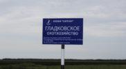 foto-gladkovskoe-ohotniche-ugode-01